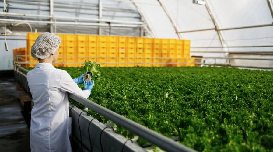 farm scientist