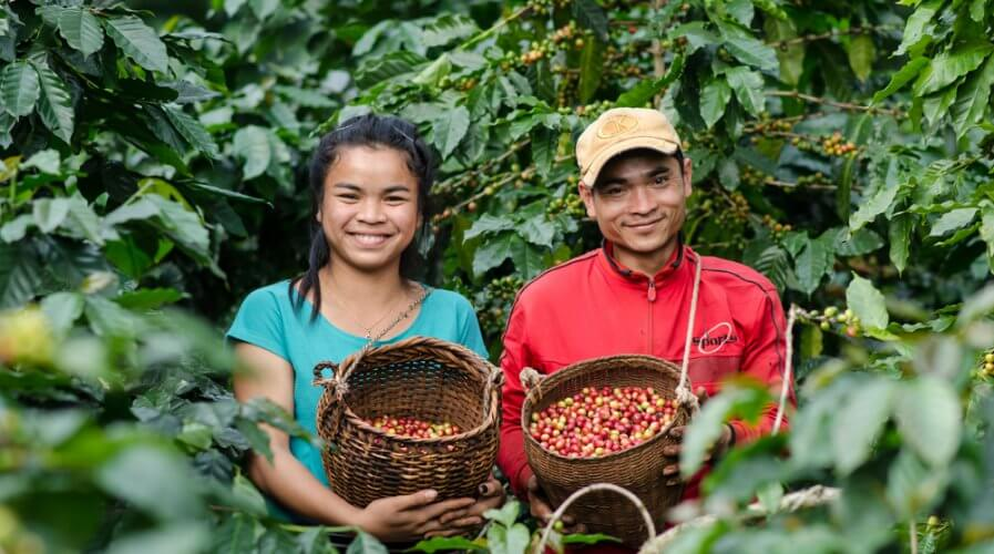With growing consumer demand for transparency on source of products, Starbucks is deploying blockchain to track beans farm to cup. Source: Shutterstock
